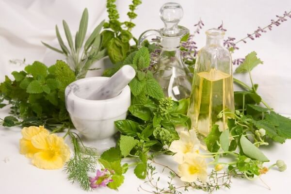 лечение мастопатии травами