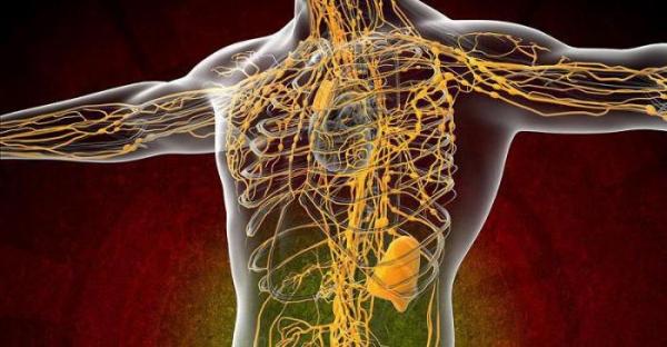 Зуд тела при заболевании печени,Post navigation