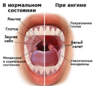фото 1