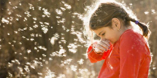 При пыльцевой аллергии страдает слизистая носа