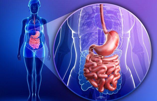 Несбалансированная работа желудочно-кишечного тракта