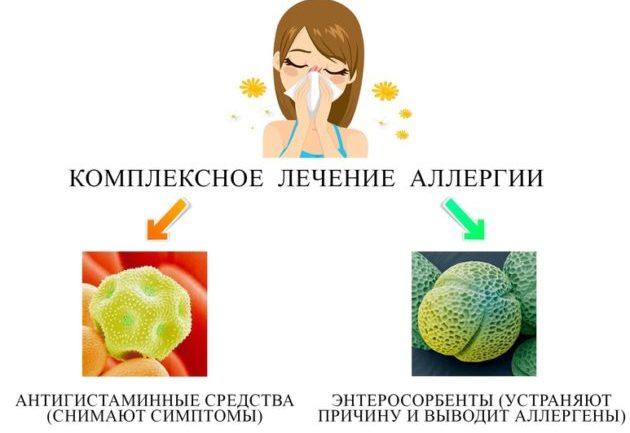 Энтеросорбент при аллергии