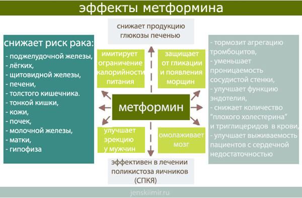 действие метформина на организм