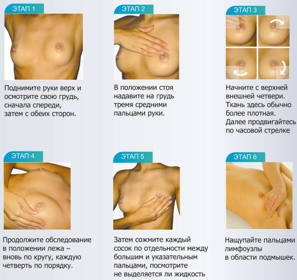 Профилактический осмотр молочных желез