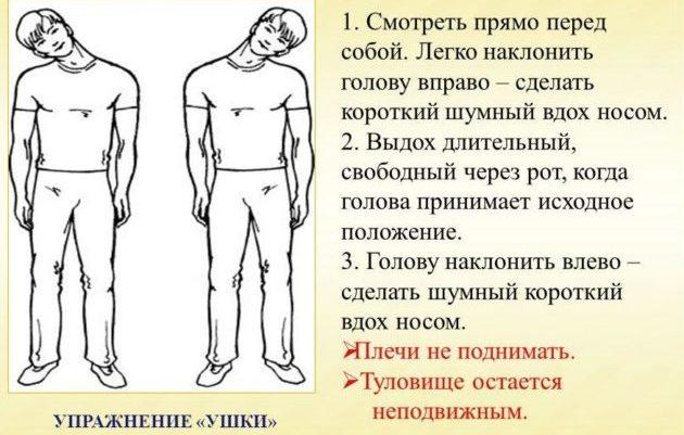 Дыхательная гимнастика Стрельникова