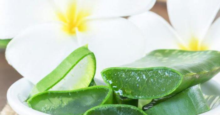 лечение диффузно кистозной мастопатии