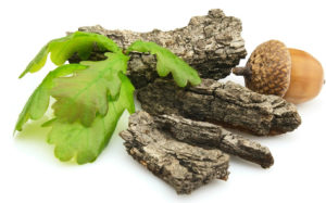 Настойка на дубовой коре хорошо помогает при грибке в паховой области