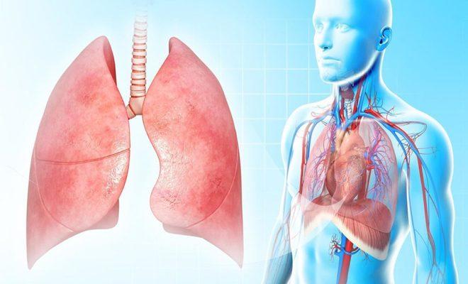 Лечение туберкулезного плеврита
